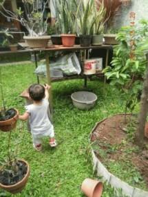 Toko Online - Buat Kado