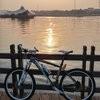 corneleon bike