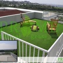 Prime Grass