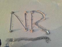 NRshop