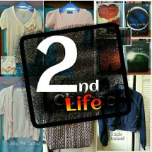 Second Life Store