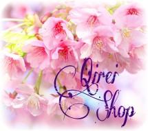 Qirei shop