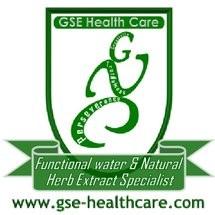 GSE Health Care