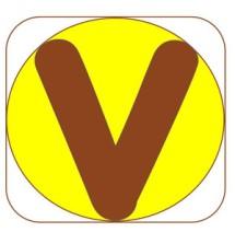 Vicci Store