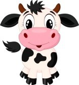 Moo Accessories
