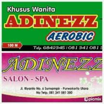 Adinezz Shop