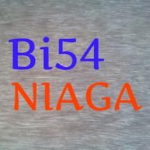 Bi54_Niaga