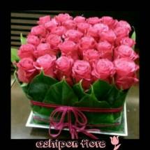 ashipon fiore