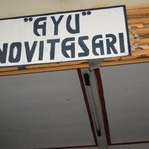 "ANS ""AYU NOVITA SARI"""
