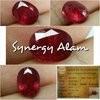 Synergy Alam
