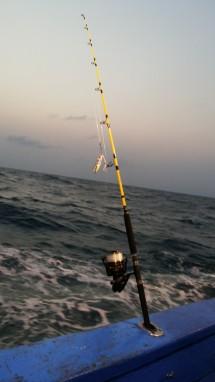 yasui fishing
