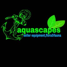djankar aquascapes