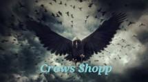 Crows fashion