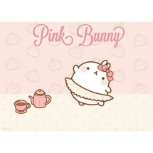 Pinky Bunny Shop