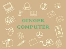 Ginger Computer