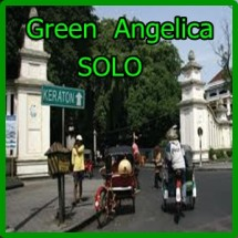 GREEN ANGELICA SOLO