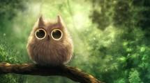 v-owl-shop