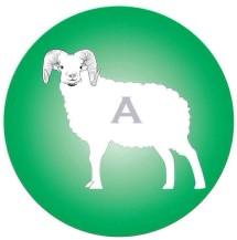 Alfabian Farm