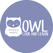 Owel Owil Project