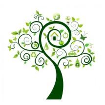 Buy To Tree