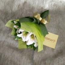 CROCUS FLORIST