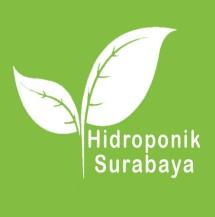 Hidroponik di Surabaya