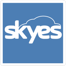 Skyes Store