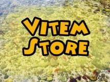 Vitem Store