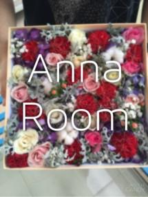 Anna Room
