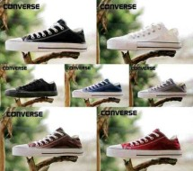Fans Shoes