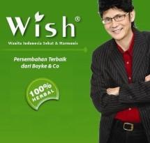 Wishboyke