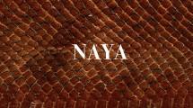 Naya Restaurant