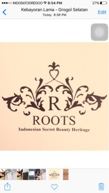 Roots Indonesia