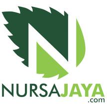 nursajaya