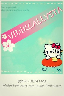 vidikcallysta