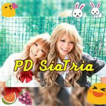 PDsiaTria