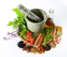 Solopedia Herbal