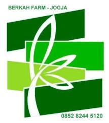 Berkah Farm