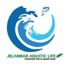 Jelambar Aquatic Life