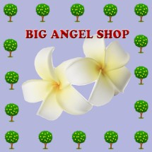 big angel shop