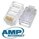 Networking Tiam