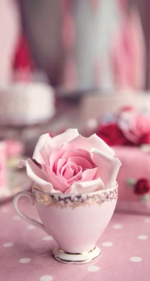 Rose.Store
