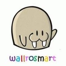 Wallrosmart Cloth