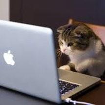 Virtual Com