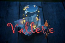 Val Shoplens