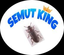 SEMUT KING