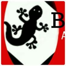 Bayawack Adveture
