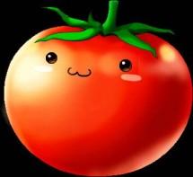 tomato84