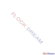 Flock Dream