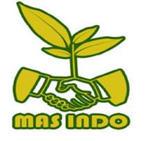 TEH GAHARU MASINDO